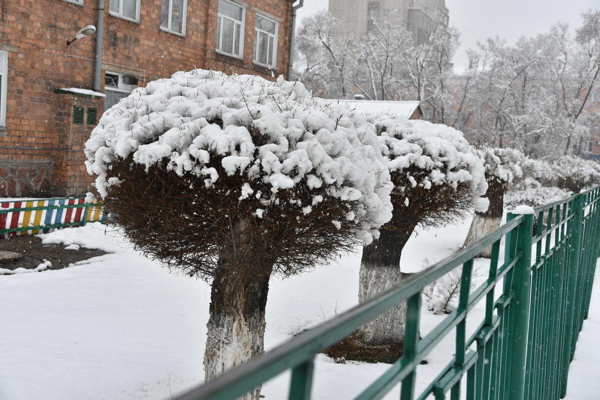 Зимний последний ! - юрий Амосов