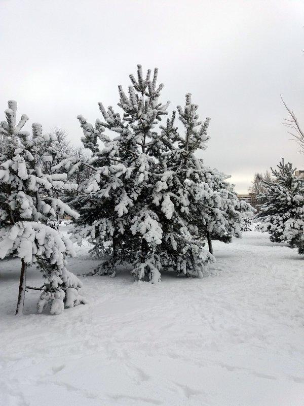 Снежный март !!!! - Агриппина