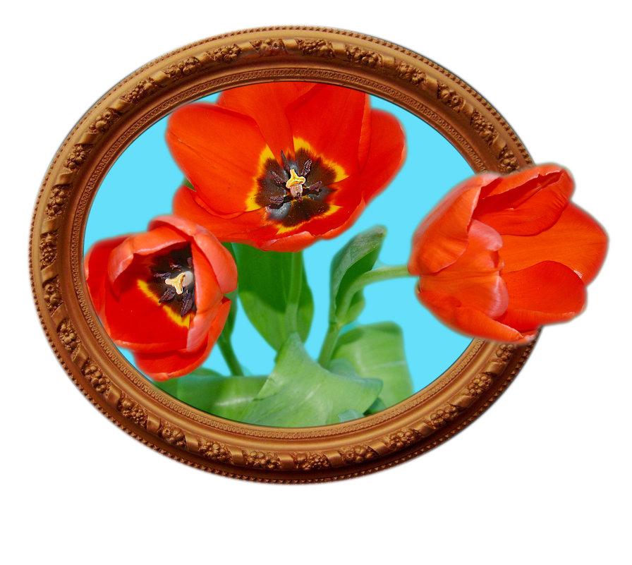 Тюльпаны - Анатолий Чикчирный