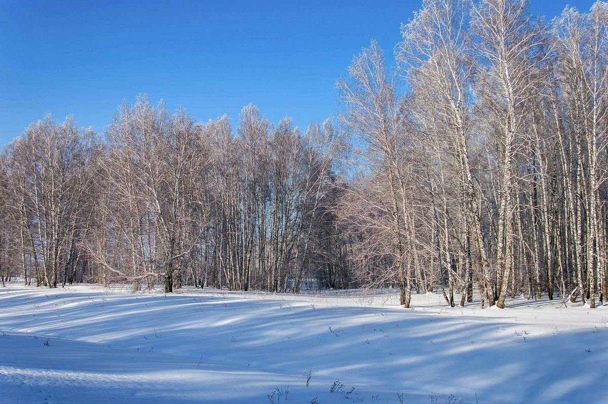 Морозный день в Сибири - Владимир Деньгуб