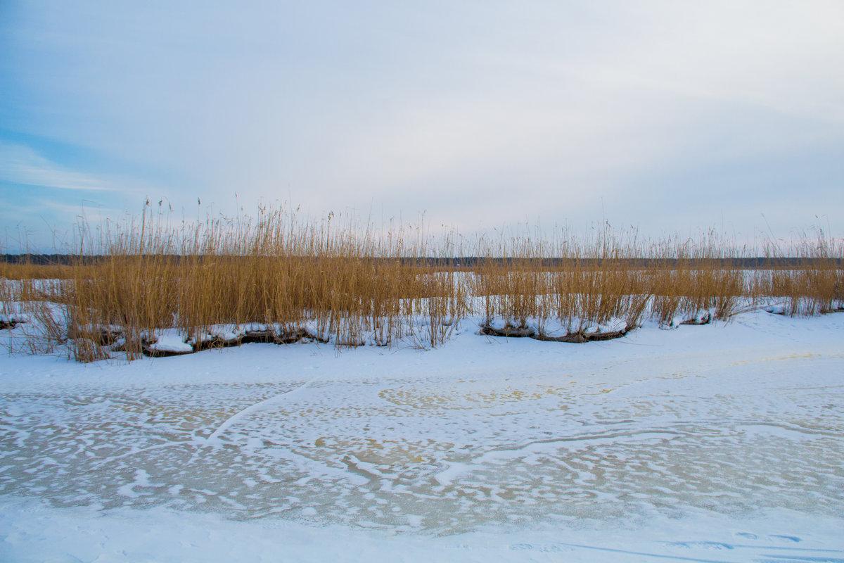 Пейзаж - Inga Engel
