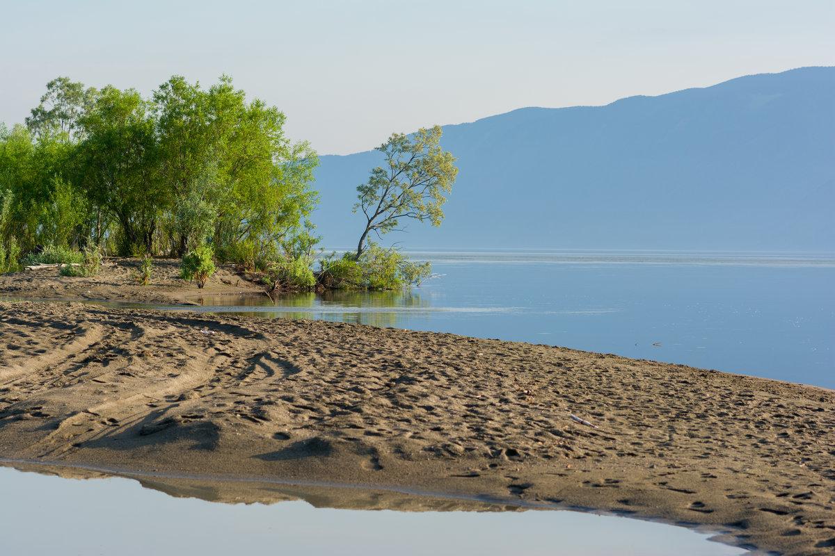 Южный берег Телецкого озера - Валерий Михмель