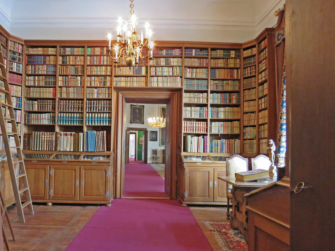 Библиотека замка Чески-Штернберг. - ИРЭН@ Комарова