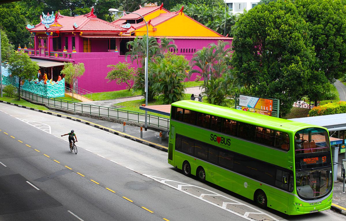 улочки Сингапура - Анна Бушуева