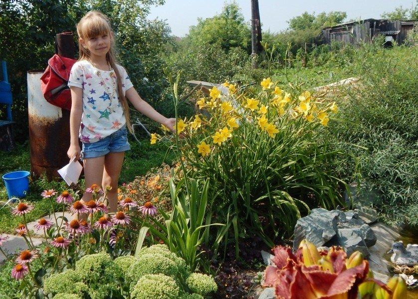 Сад,огород - Нина