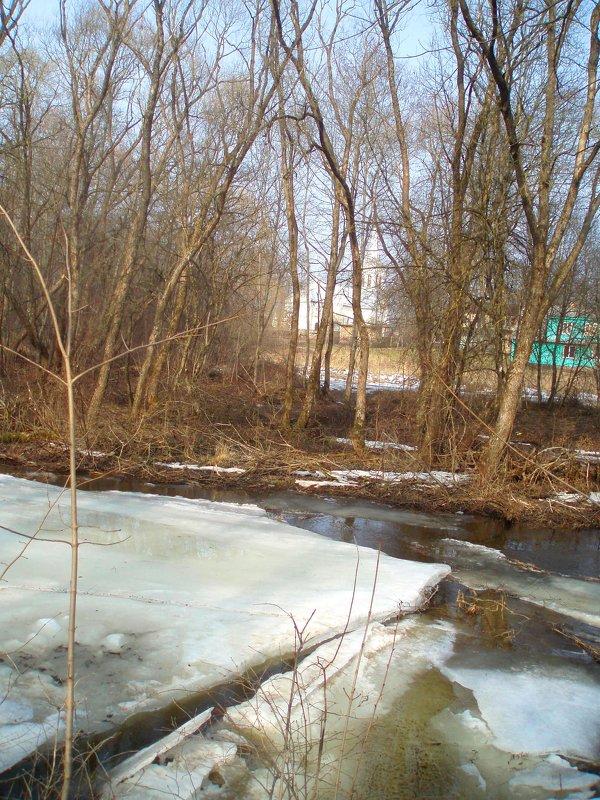 Spring in Lėvuo river - silvestras gaiziunas gaiziunas