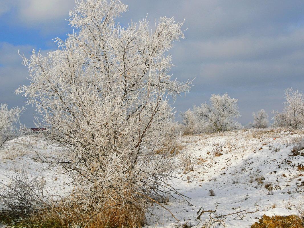 морозным утром - Андрей Козлов