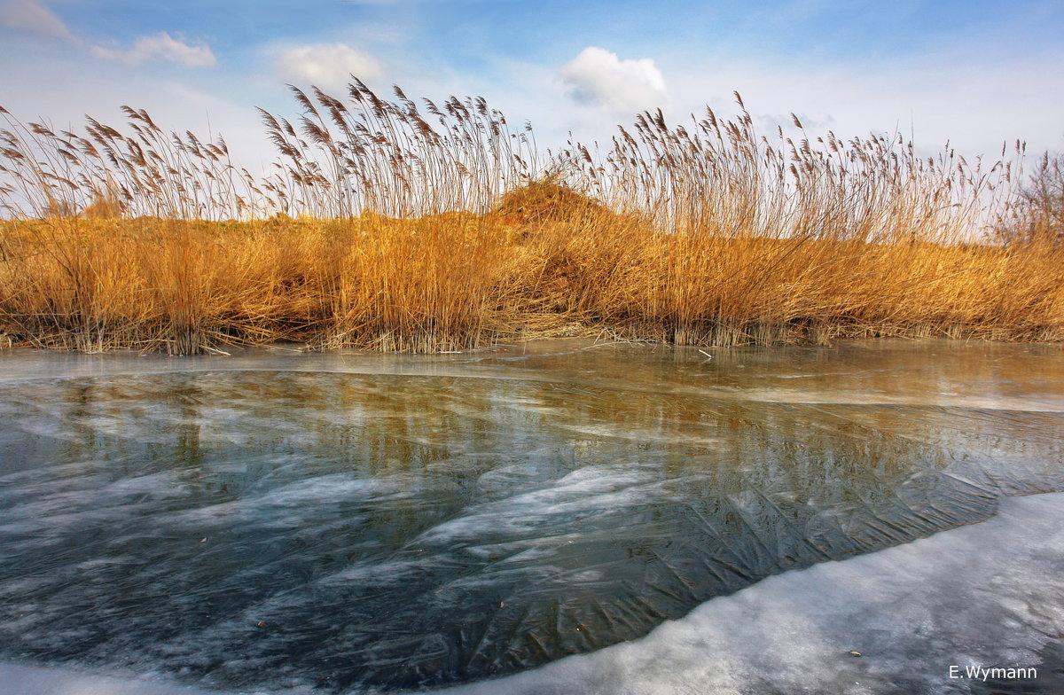 мороз и солнце - Elena Wymann