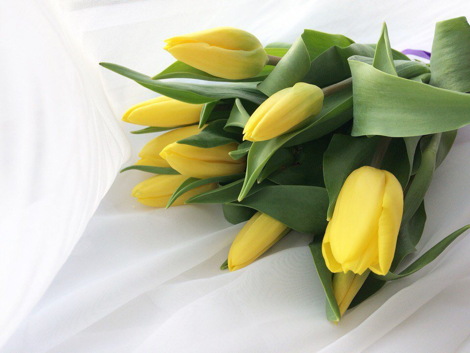 подарок на 8 марта - Уля Машникова