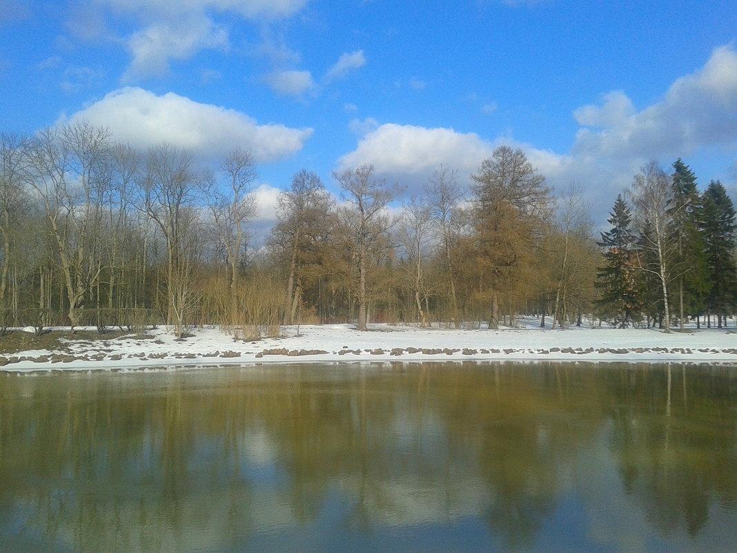 Зима - Сапсан