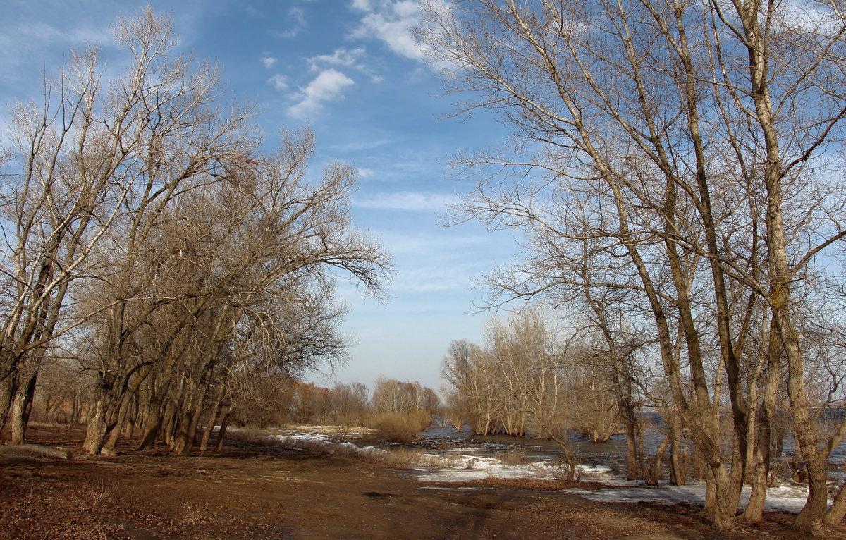 Весенний пейзажЪ - Dr. Olver ( ОлегЪ )