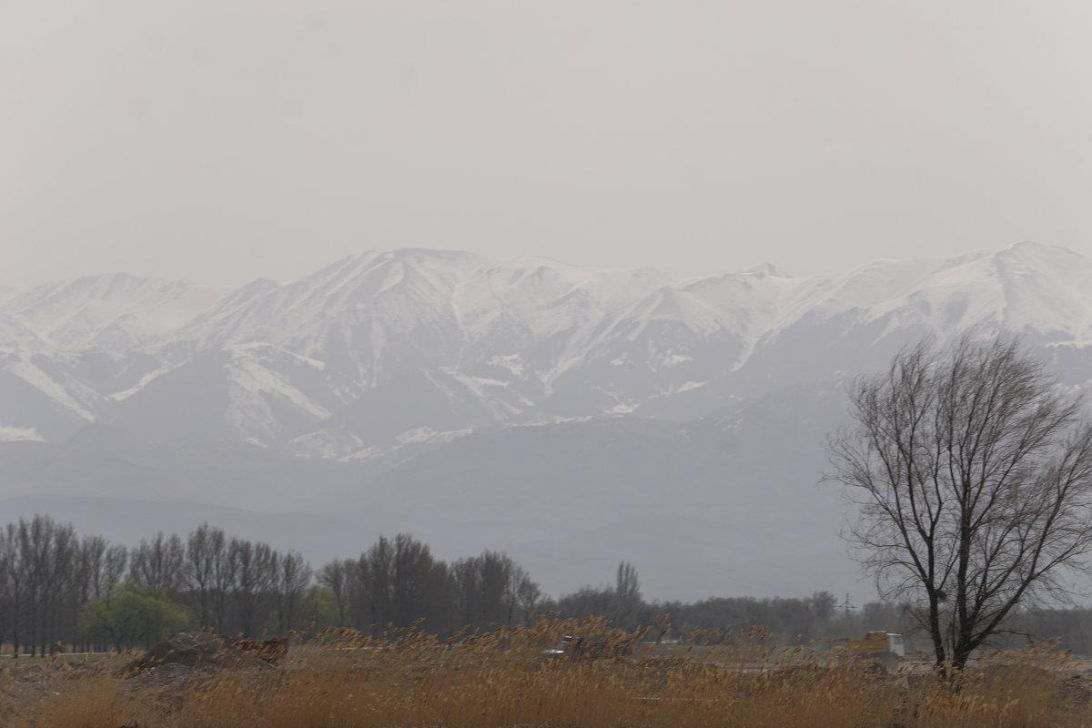 Казахстан. - Murat Bukaev