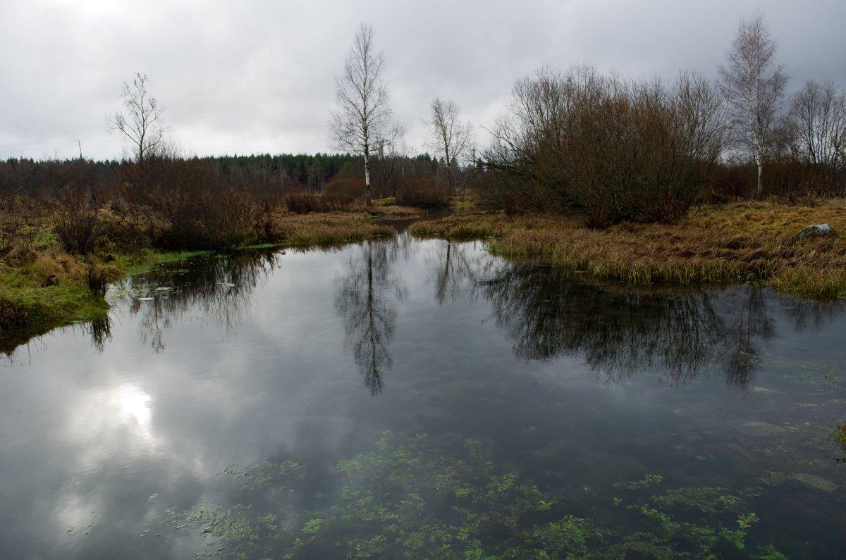 Прозрачность воды - Станислав Гераськин