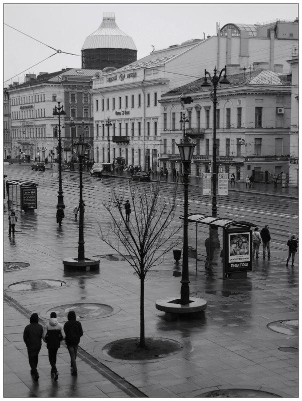 мелкий невский дождичек - sv.kaschuk
