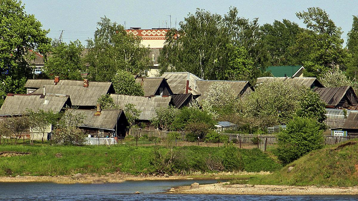 Серые крыши - Nikolay Monahov