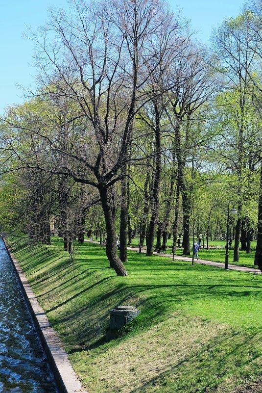 У Михайловского замка - Ольга Васильева