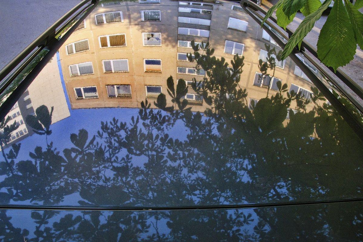 Листья - Kliwo