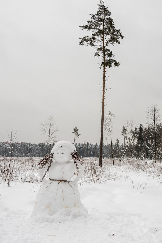 Зимние виды. - Владимир Лазарев
