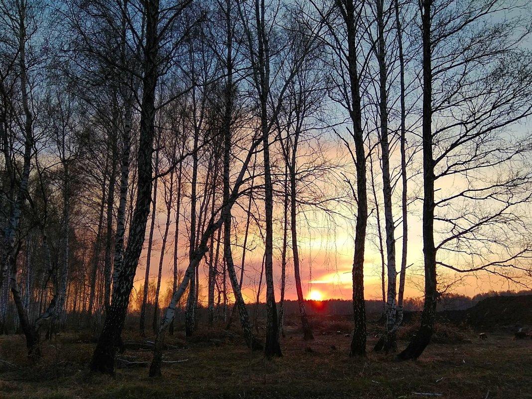 По небу солнце разливает краски ... - Татьяна Котельникова
