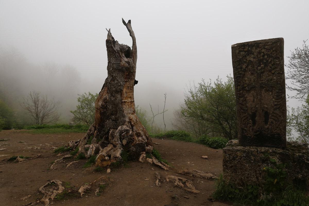 Сгоревшее дерево и хачкар - Татьяна [Sumtime]