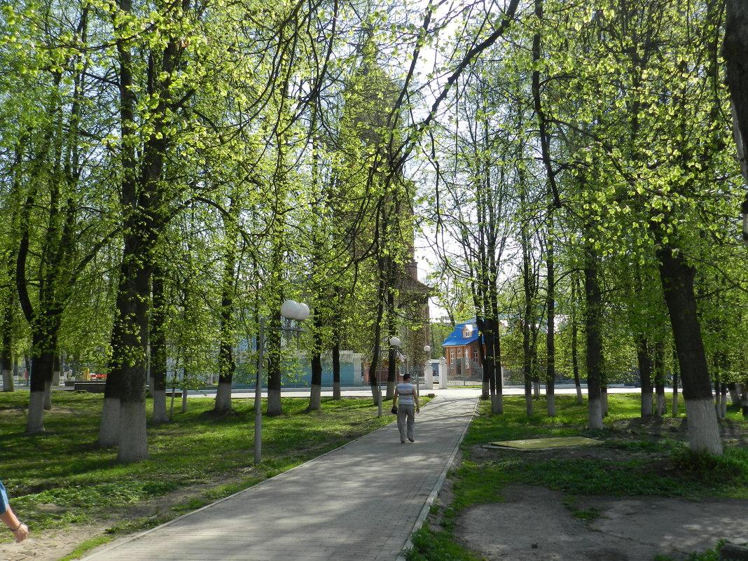 Нежность весны - Анатолий Кувшинов