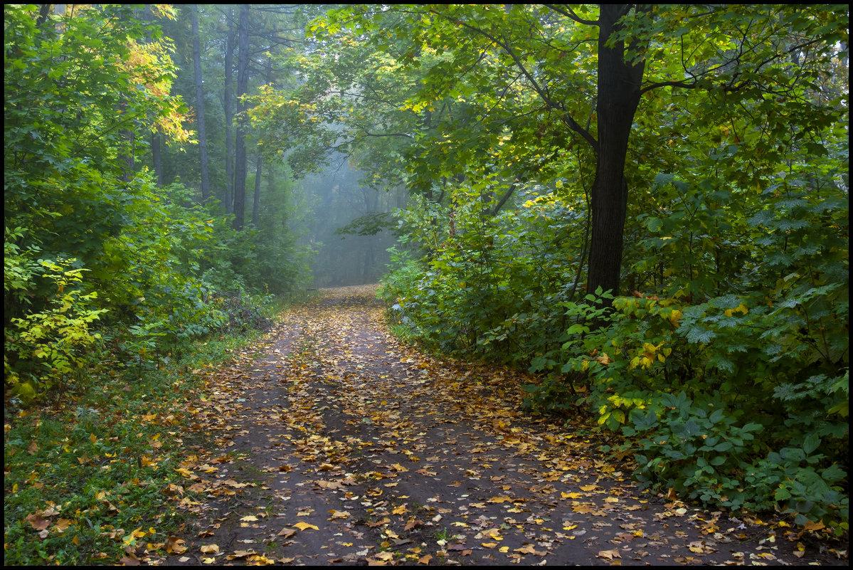 В осеннем лесу - Алексей Патлах