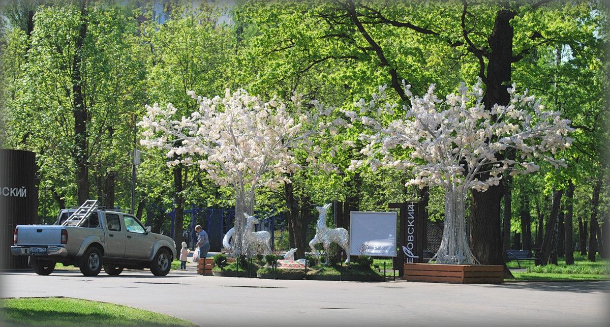 Новое украшение нашего парка - Mamatysik Наталья Бурмистрова