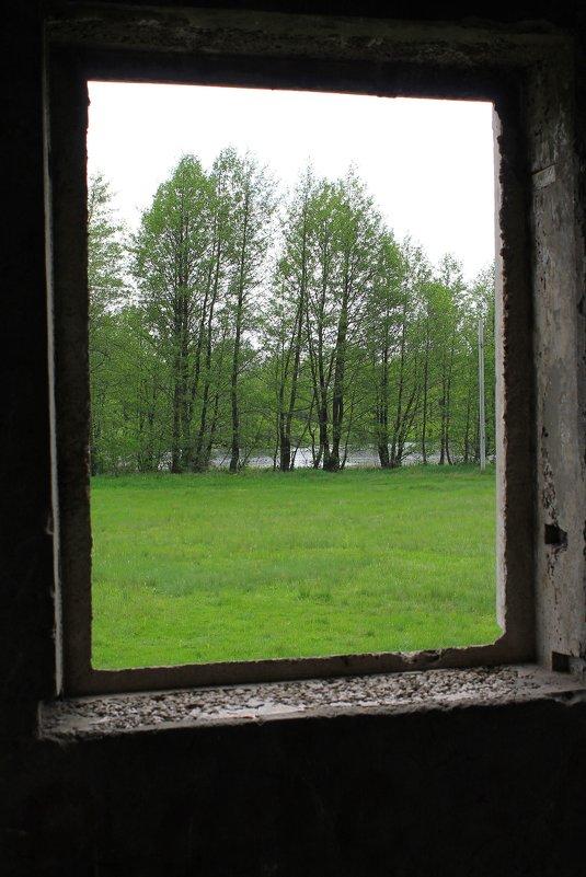 зелёное окно - Валерий Хинаки