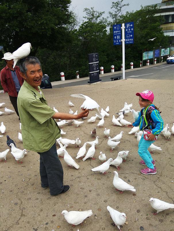 Порт-Артурские голуби - Ирина Червинская
