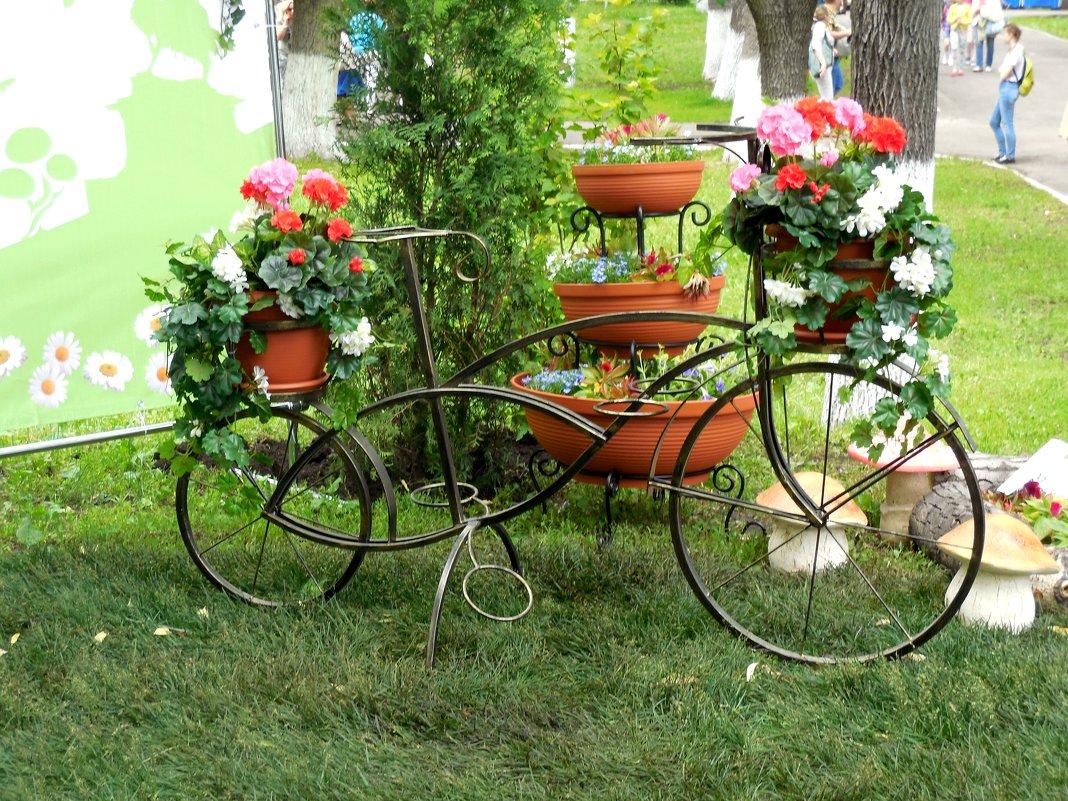 Праздник цветов - Надежда