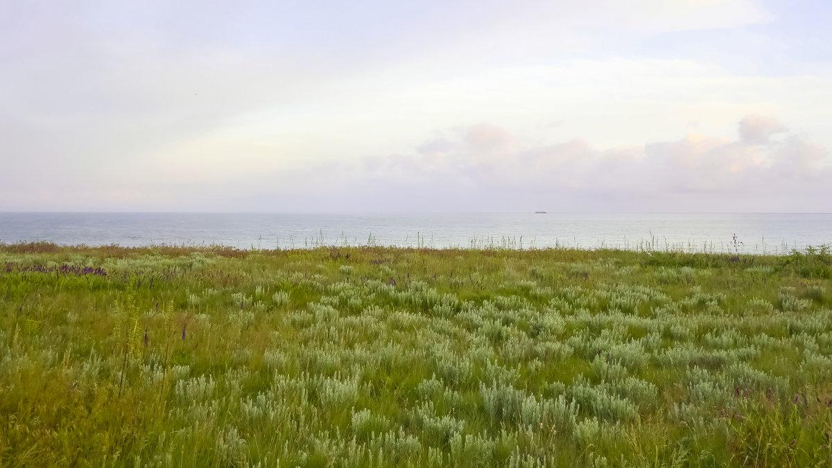 море - олег