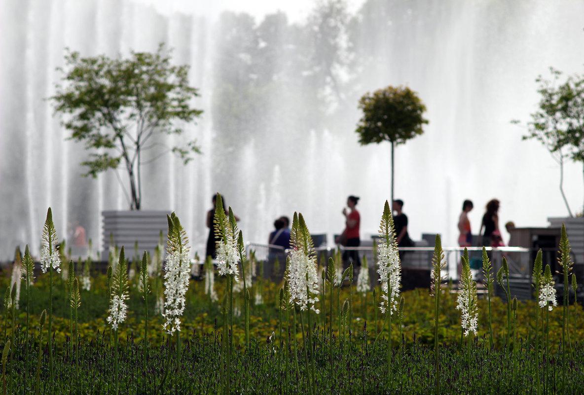 У фонтана - Екатерина Липатова