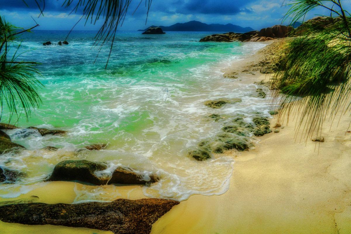 под пальмами на берегу Индийского океана - Георгий