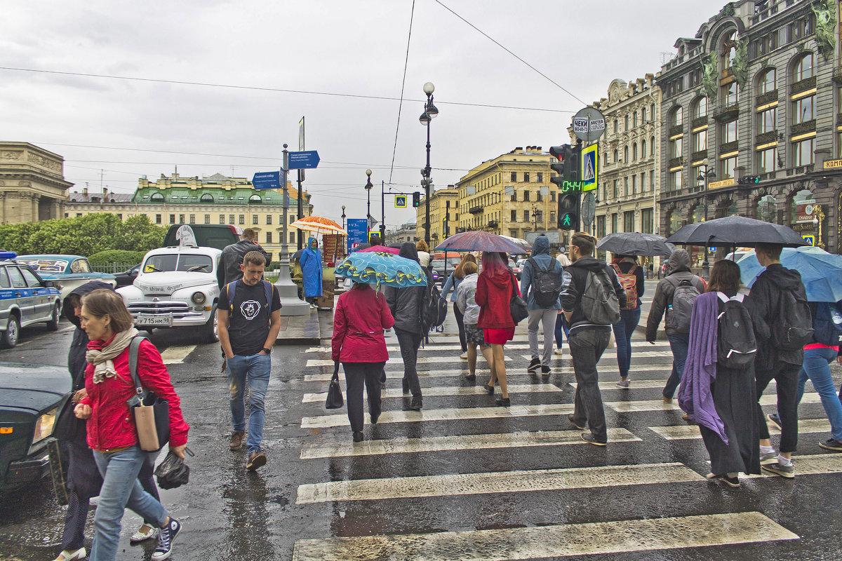 Первый теплый весенний дождь... - Senior Веселков Петр