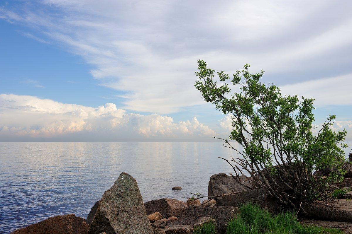 на Финском заливе... - Андрей Вестмит