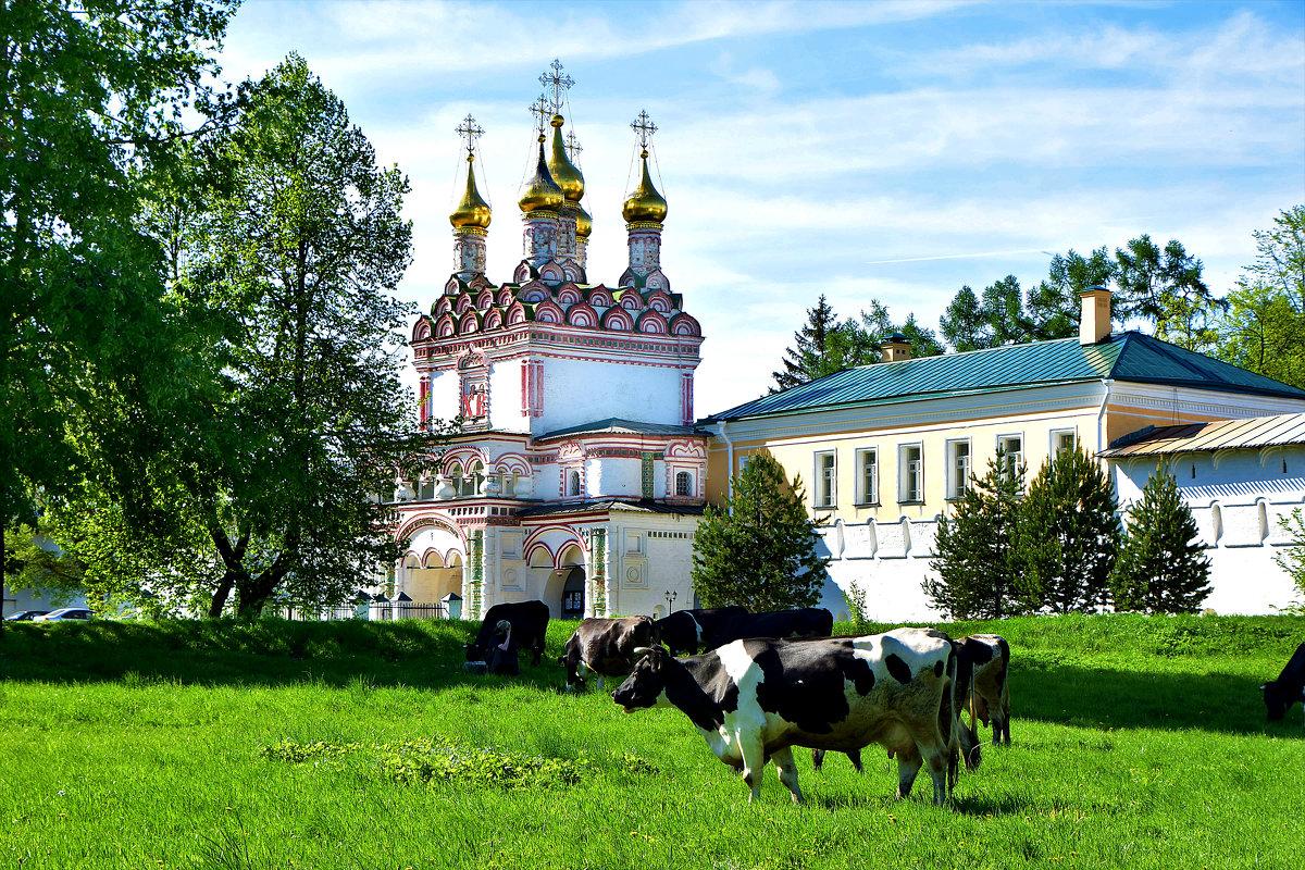 На лужайке у монастыря - Oleg S