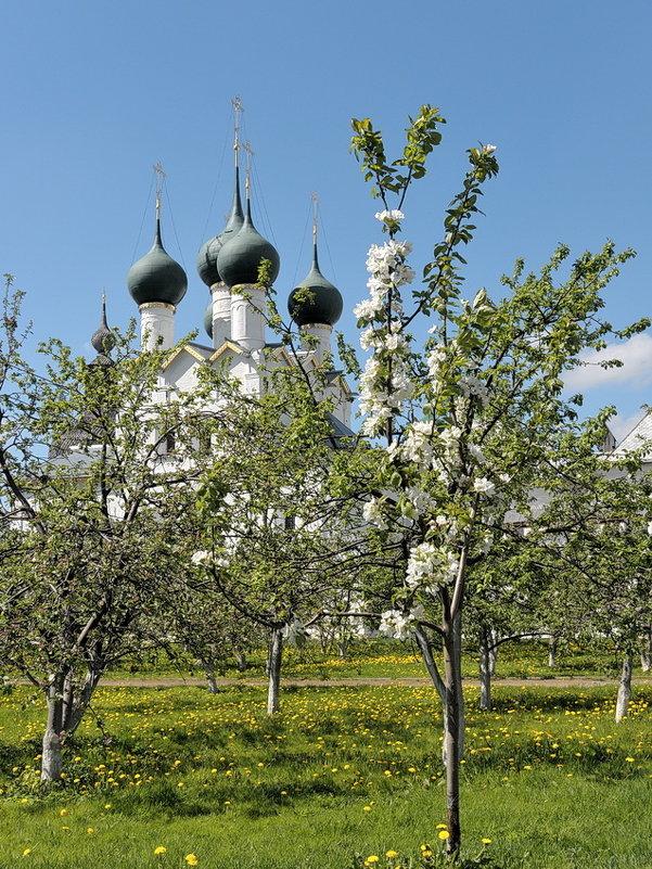 В саду Ростовского кремля, яблони цветут - Николай Белавин