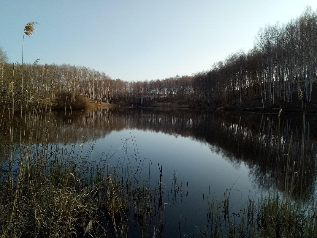 Лесное озеро - Николай