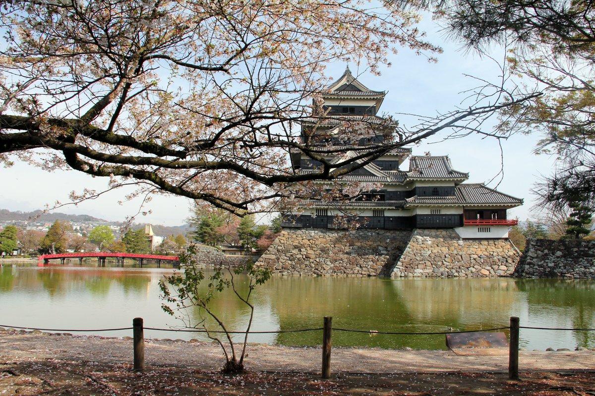 Япония. Замок Мацумото. - Виктория