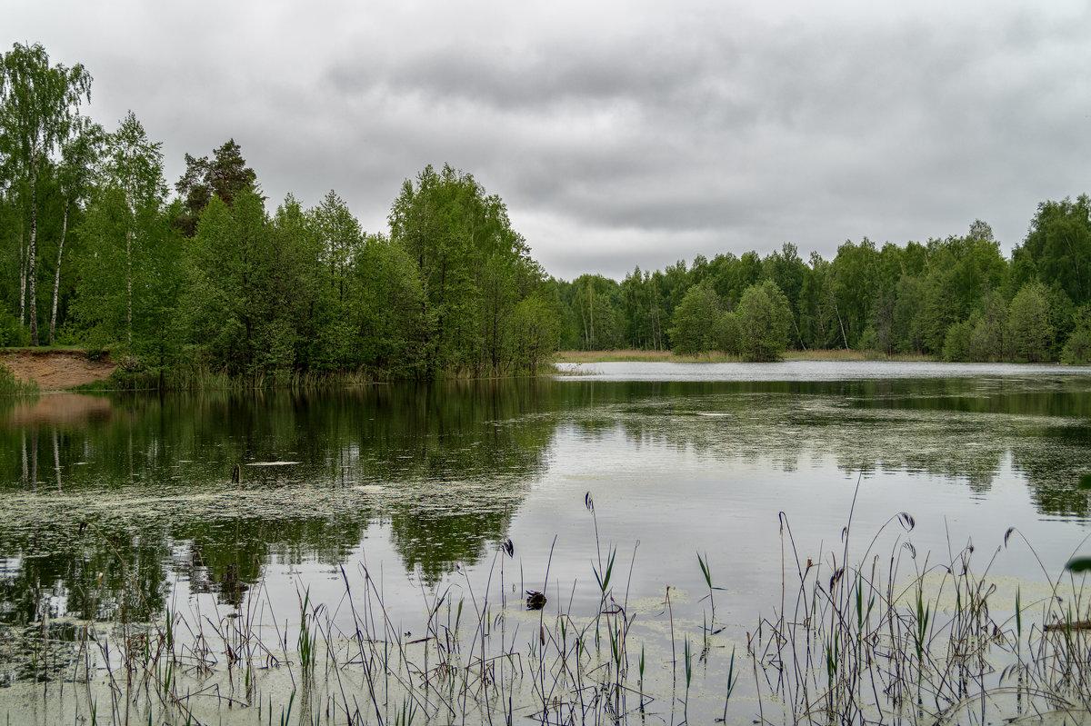 После дождя 2 - Андрей Дворников