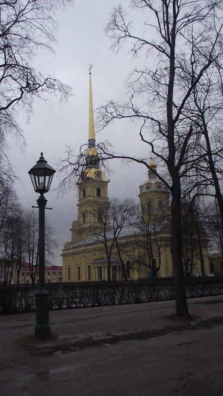 Собор Святых первоверховных апостолов Петра и Павла. - Татьяна