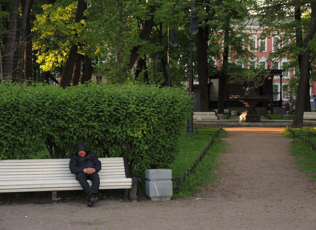 майская ночь в Соловьёвском саду - sv.kaschuk