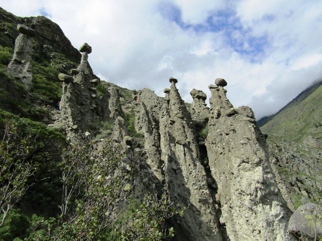 Выросли грибочки - Galaelina ***