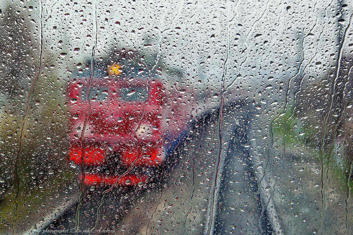 Весенний дождь - Алексей Белик