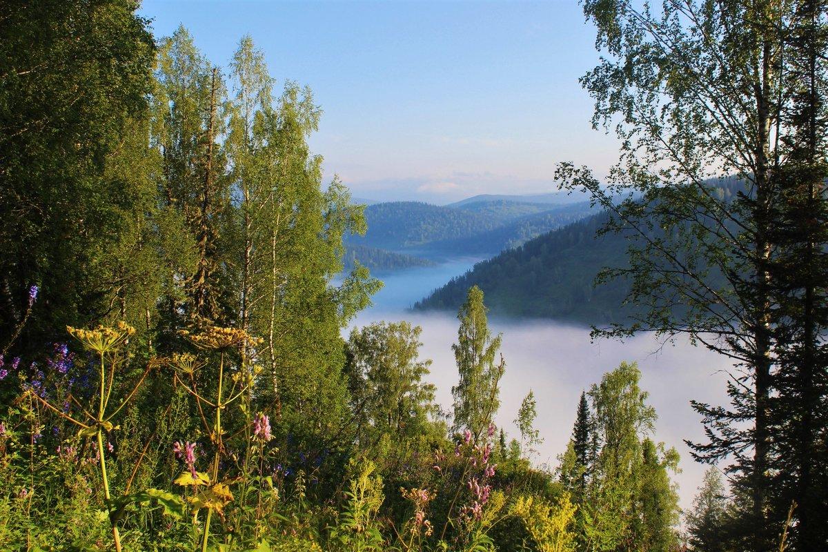 Утро в долине Белой Усы - Сергей Чиняев