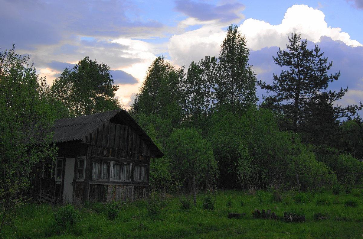 Перед грозой - Виктор Никитенко