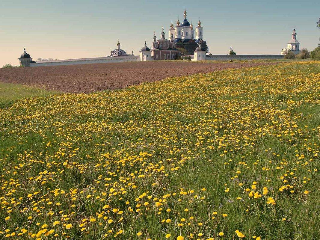Вид на Свенский монастырь - Владимир Безгрешнов