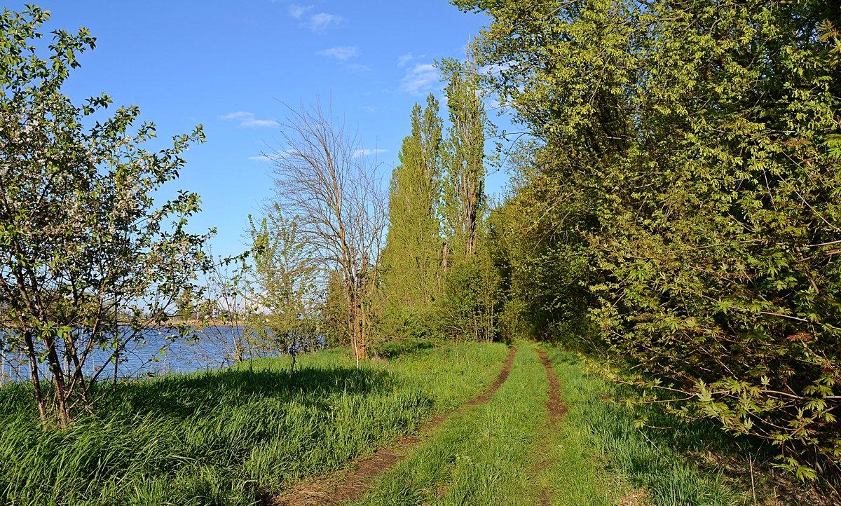 В весеннем парке - Валентина