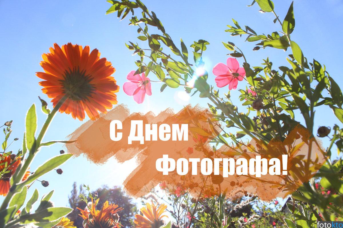 С днёт Фотографа - Виктор Шандыбин