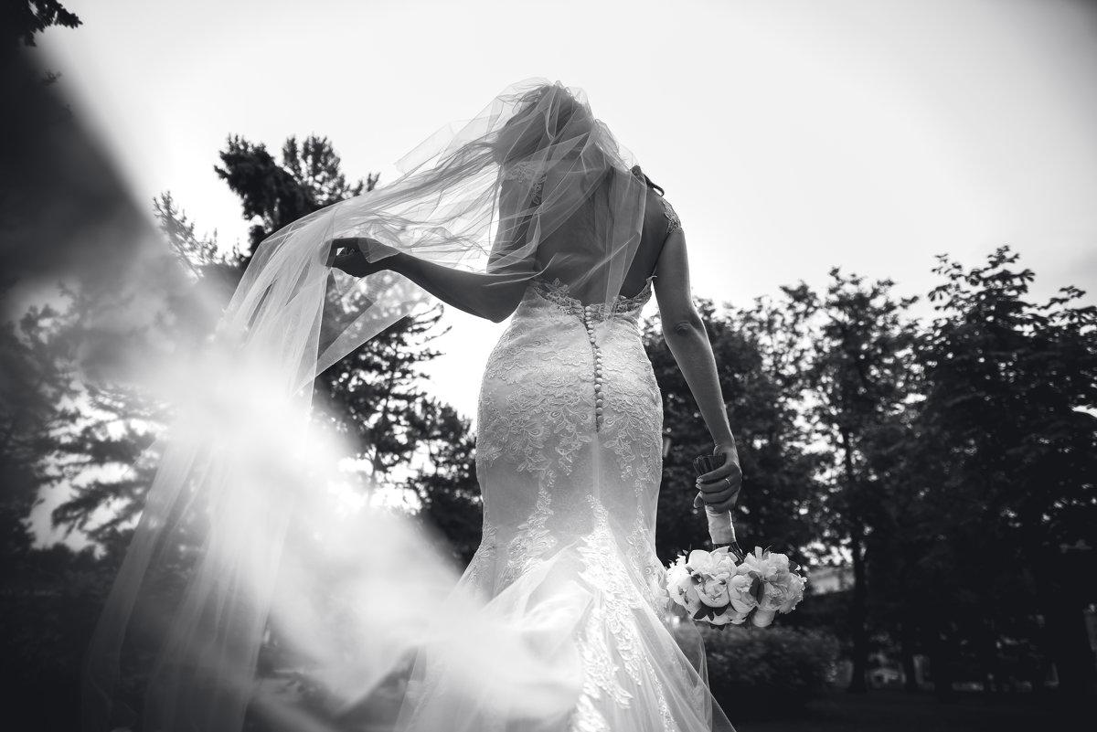 свадебные зарисовки - елена брюханова